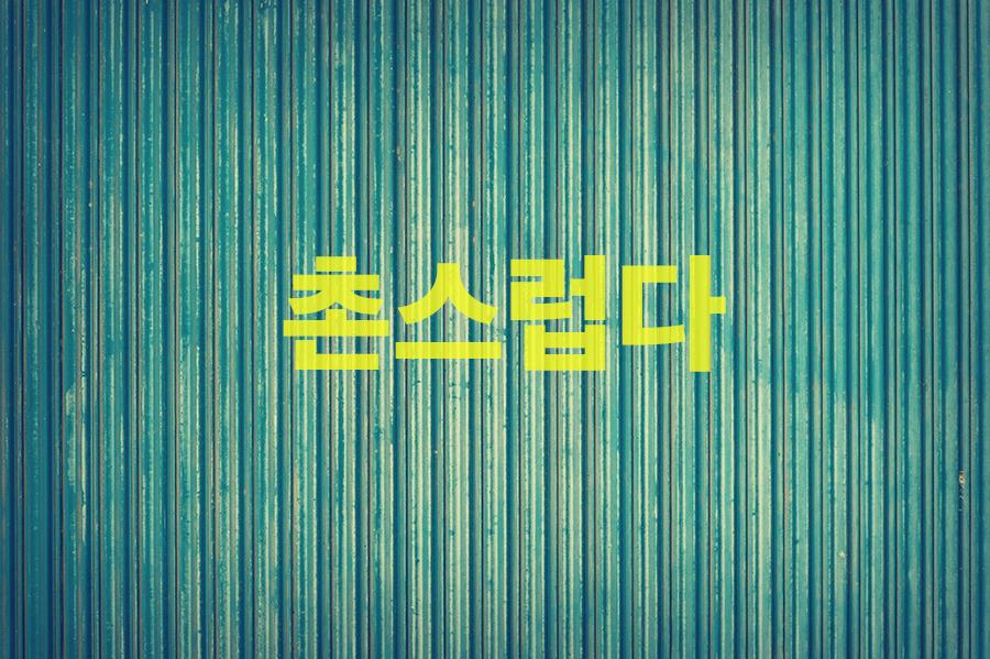 【中級】韓国語「촌스럽다(チョンスロプタ)」を覚える