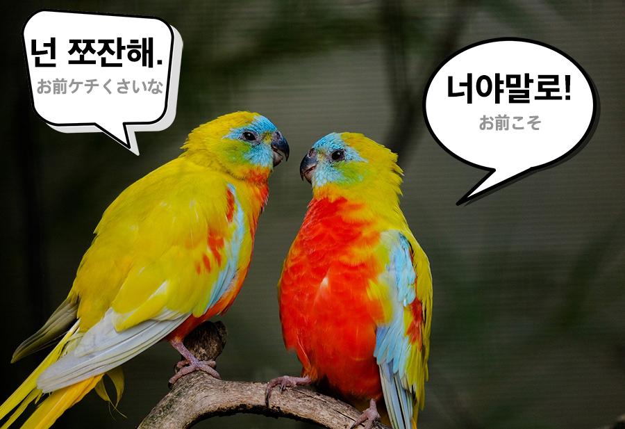 【中級】韓国語「쪼잔하다 (ッチョジャンハダ)」を覚える