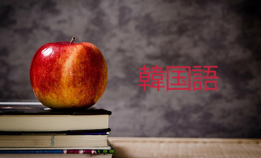 【韓国語】韓国語学習方法の紹介と学校の選び方